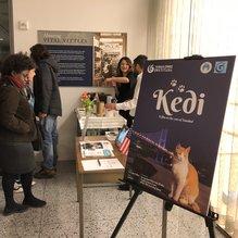 Kedi belgeseli Washington'da gösterildi