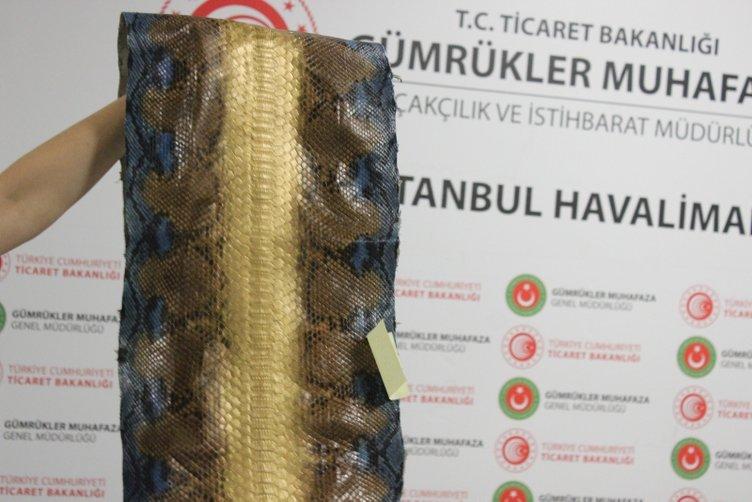istanbul havalimaninda ele gecirilen yilan derilerinin degeri 320 bin tl 1568200955421
