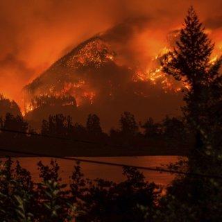 ABD'de orman yangını çıkartan gence büyük ceza