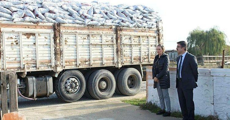 Kapaklı'da kömür dağıtımı