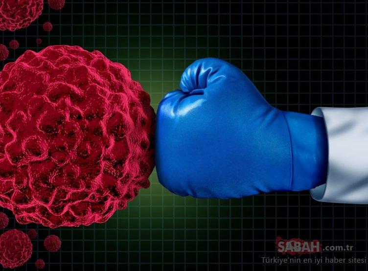 Antioksidan zengini bu besinler bağışıklığınızı güçlendirecek!