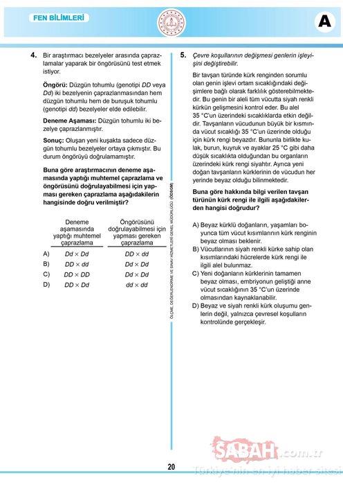 LGS fen bilimleri soruları ve cevapları: 2020 Fen Bilimleri testi LGS soru ve cevap anahtarı MEB ile yayınlandı