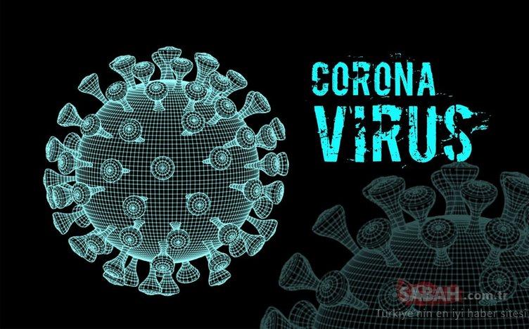 Corona virüs salgınınakarşı 9 güçlü savaşçı! İşte bağışıklığı güçlendirmede en önemli besinler