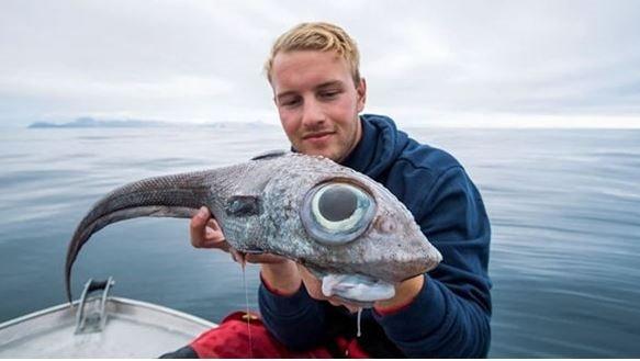 Oltasına takılan balığı görünce hayatının şokunu yaşadı! Korkudan denize düşüyordu