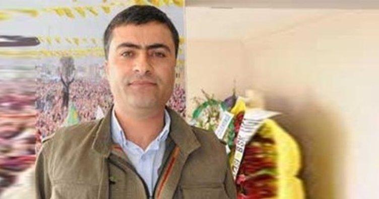 HDP Hakkari Milletvekili Zeydan'ın hapis cezası onandı