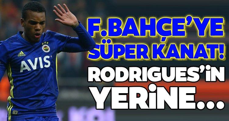 Transferde son dakika: Fenerbahçe'ye süper kanat! Garry Rodrigues'in yerine...