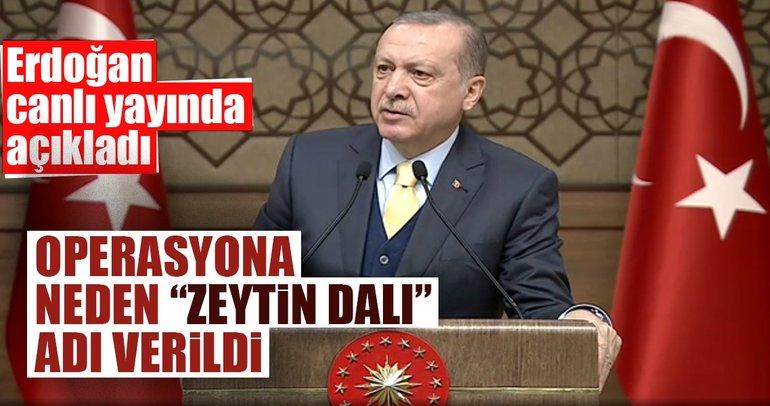 Operasyona neden Zeytin Dalı adı verildi? Cumhurbaşkanı Erdoğan açıkladı...