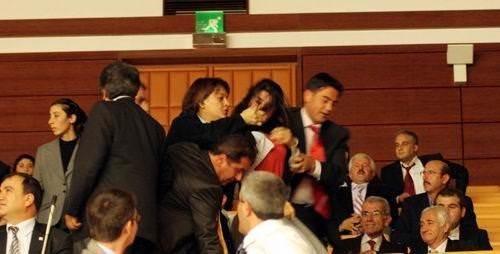Mecliste eylem