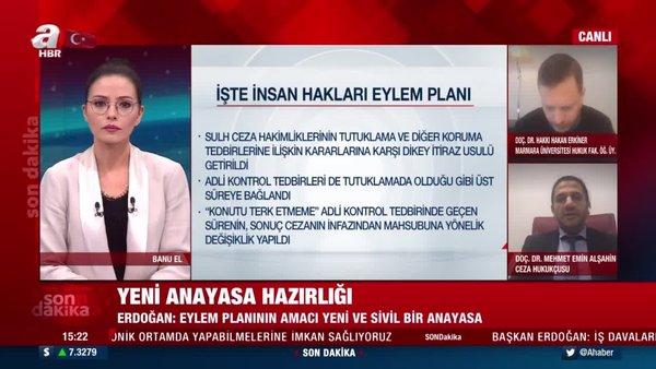 İşte Cumhurbaşkanı Erdoğan'ın açıkladığı İnsan Hakları Eylem Planı'nın detayları... | Video