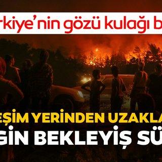 İzmir'den son dakika haber: Tüm Türkiye'nin gözü kulağı orada! İzmir'de orman yangını....