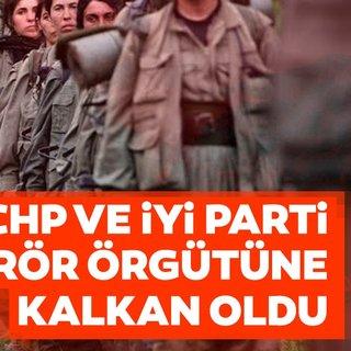 CHP ve İyi Parti terör örgütüne kalkan oldu