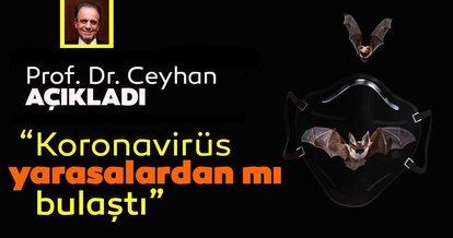 Son dakika haberi: Prof. Dr. Mehmet Ceyhan açıkladı! Corona virüsün yarasalardan bulaştığı iddiası doğru