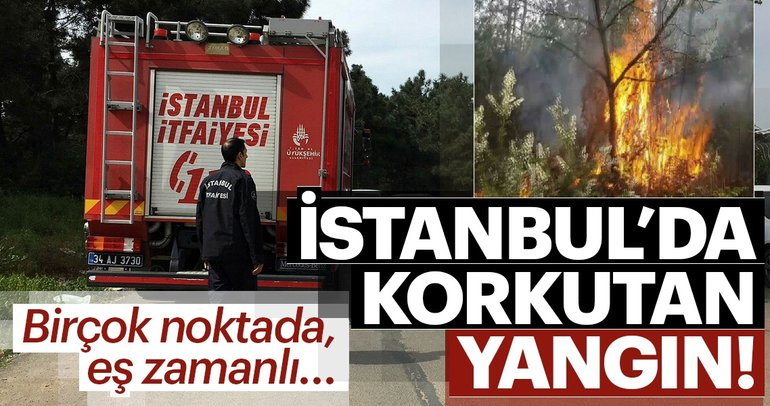 Son Dakika Haberi: İstanbul'da orman yangını! Sancaktepe Aydos Ormanı'nda yangın çıktı
