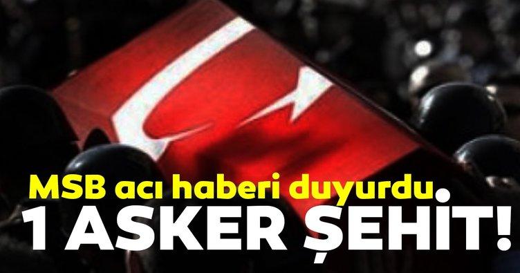 MSB: Barış Pınarı Harekatı'nda 1 asker şehit oldu