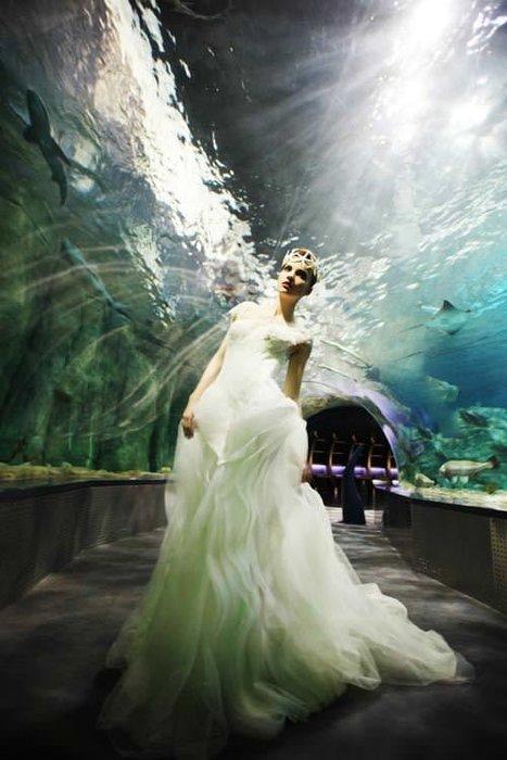 Evlilik Dünyası 2014