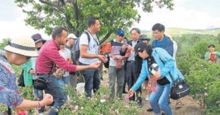 Gül turizminde Güneykent farkı