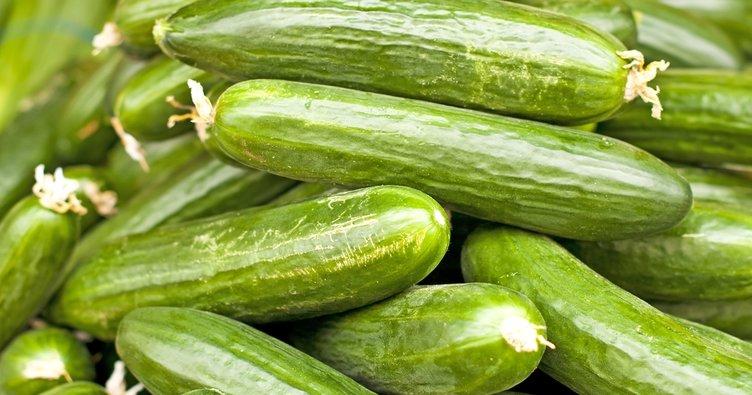 Salatalığın faydaları nelerdir? İşte salatalığın mucizevi yararları