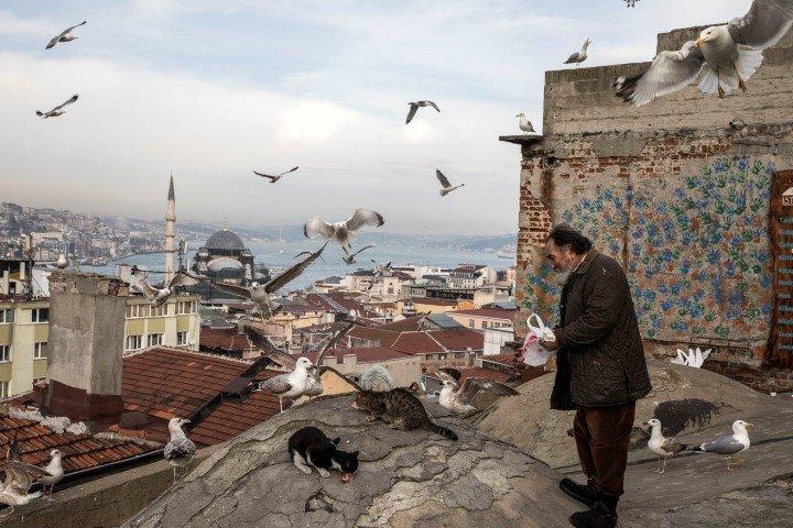 Gençlerin gözdesi 'Kubbe İstanbul' mühürlendi