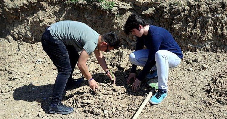 Üniversiteliler 2 bin adet çam fidanını toprakla buluşturdu