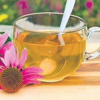 Kış hastalıklarına karşı ekinezya çayı