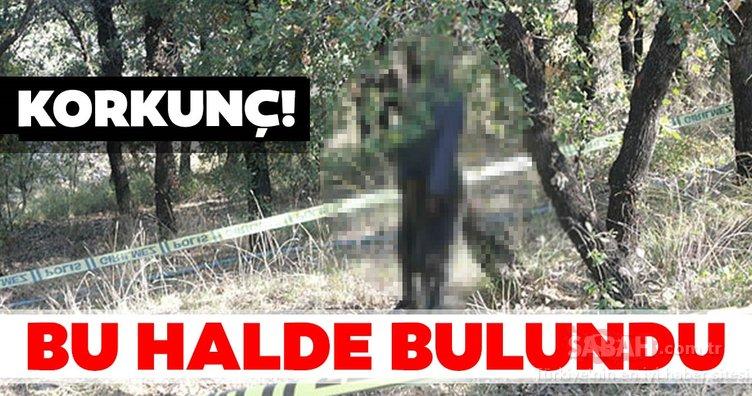 Adıyaman'da korkunç olay! Ağaca asılı erkek cesedi bulundu