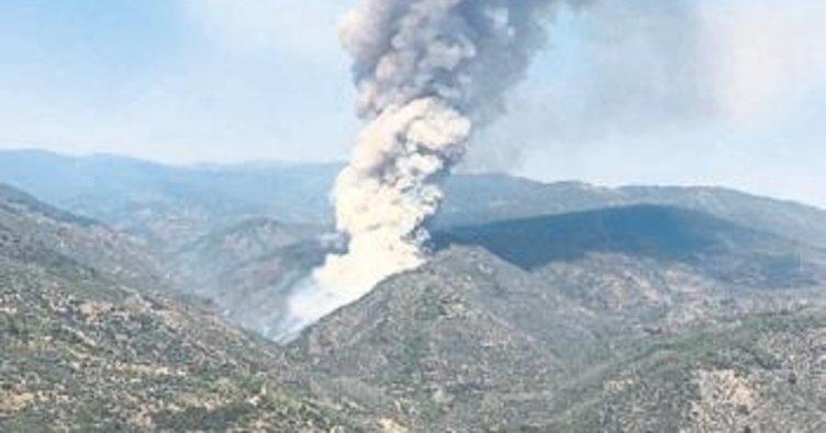 Orman yangınında piknik ateşi iddiası