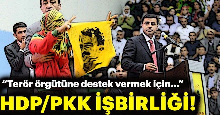 HDP-PKK bağlantısı tanık ifadesinde
