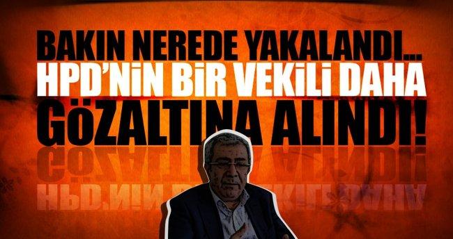 HDP'li vekil kaldığı otelde gözaltına alındı