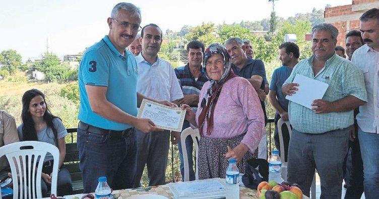 27 bin adet zeytin köylülere dağıtıldı