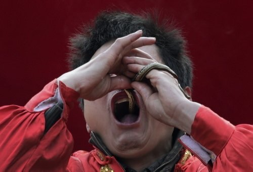 Çin'de Yılan yılı festivali