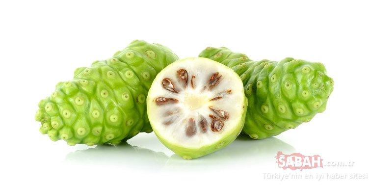 Adeta dev bir duta benziyor... Mucizevi meyvenin faydalarına inanamayacaksınız!