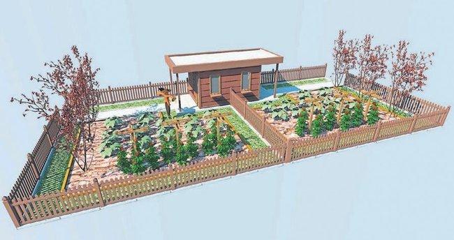Şehir stresine karşı 'Hobi Bahçesi Projesi'