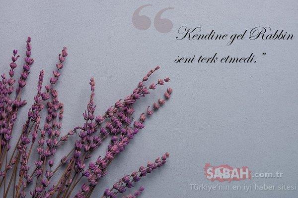 Doğum yıl dönümde Mevlana'yı anıyoruz...Mevlana'nın 10 özlü sözü
