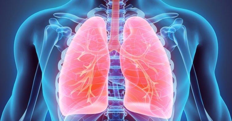 Akciğere ne iyi gelir? Akciğere iyi gelen besinler, bitkisel çözümler nelerdir?