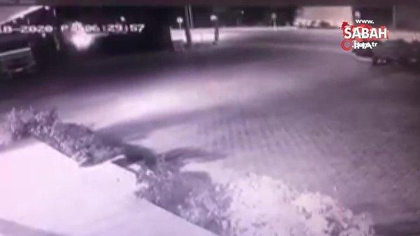 Refüje çarpan tır, tozu dumana katıp böyle yan yattı   Video