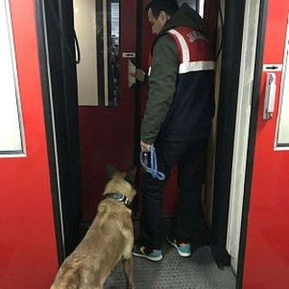 Hareket halindeki trende köpeklerle arama yapıldı