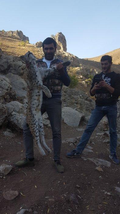Vaşak katillerine 8 bin 818 lira ceza