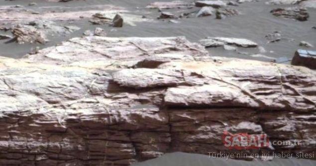 Mars fotoğraflarındaki gizemli cisimler