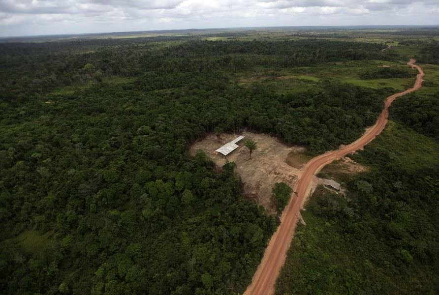 agriculture in the amazon rainforest essay The amazon rainforest region is a tropical rainforest located in the northern part of the south america continent, it stretches across the countries of brazil, bolivia, ecuador, peru, colombia, venezuela, suriname, french guiana and guiana.