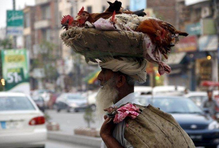 Hindistan'dan garip enstantaneler