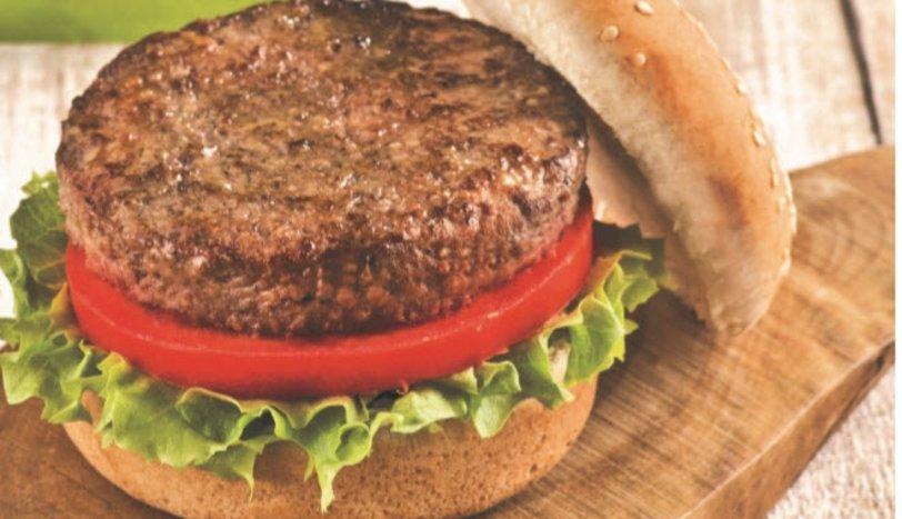 hamburger ile ilgili görsel sonucu