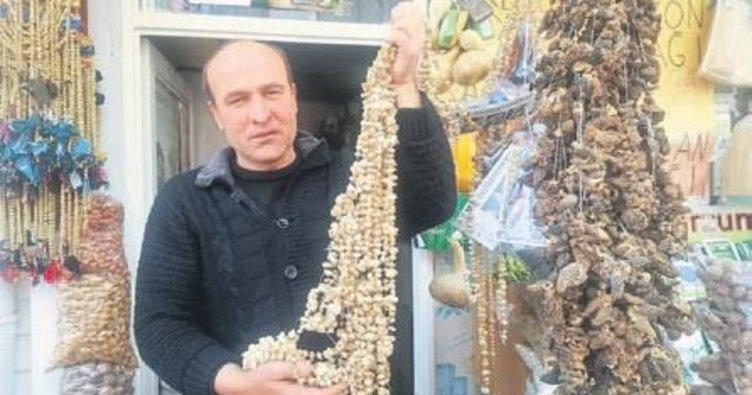 Salep köylülerin ekmek kapısı oldu