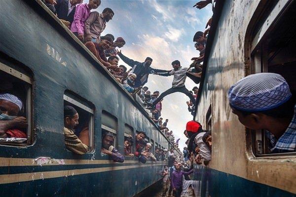 2016 National Geographic yarışmasından en iyi kareler