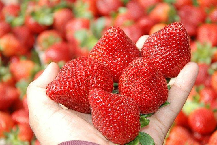 Bu besinler tansiyonu anında dengeliyor!