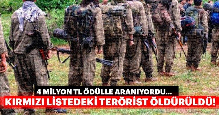 Son dakika: Kırmızı listeden terörist öldürüldü