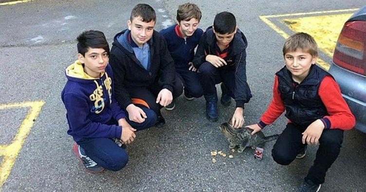 Harçlıklarıyla sokak hayvanlarını beslediler