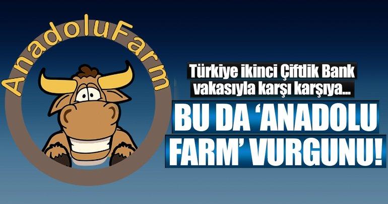 İkinci Çiftlik Bank vakası! Bu da 'Anadolu Farm' vurgunu