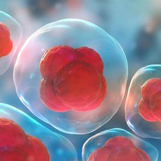 Kansere karşı genetiği değiştirilmiş akıllı hücreler geliyor