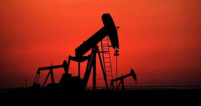 Ham petrol fiyatı taleplerin azalmasıyla sabit kaldı