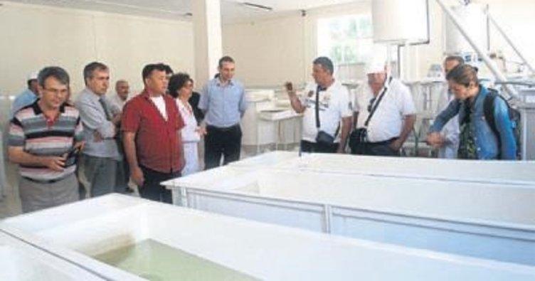 DSİ projelerine Tacikistan ilgisi
